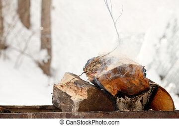 piknik, kandalló, firewoods, égető, mező