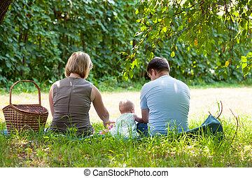 piknik, park, posiadanie, rodzina