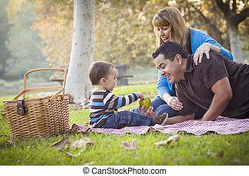 piknik, rodina, sad, druh, etnický, smíšený, obout si, šťastný
