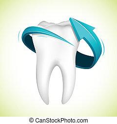 pil, omkring, tænder
