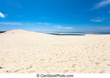 pilat, dune