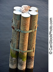 Pile at the water with a seagull on it