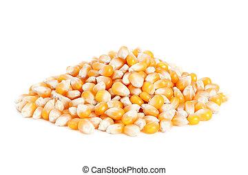 Pile corn isolated on white background.