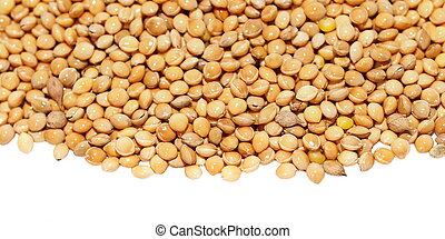 pile millet isolated on white
