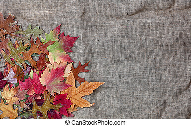 Pile of Autumn leaves for the season on burlap setting
