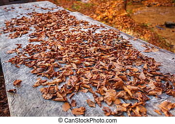 pile of autumn leaves, on a wooden background