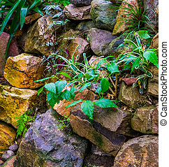 pile of big rocks in a tropical garden, backyard decorations, nature background
