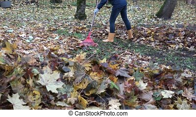 Pile of blurred leaves and woman legs in gumboots raking leaves with rake. 4K