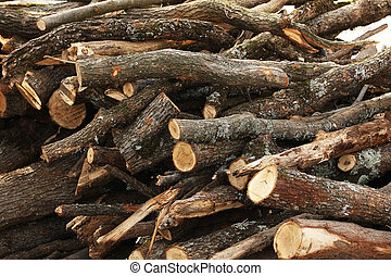 Pile of catted fire wood