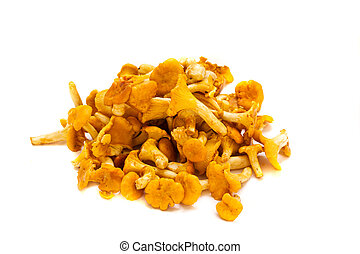 chanterelles - pile of chanterelles mushrooms isolated on ...