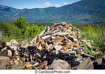 Pile of Chopped Firewood in the Mountain Village on a Summer Day.