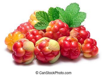 Pile of cloudberries (Rubus Chamaemorus)