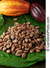 Pile of cocoa beans