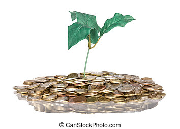 Pile of coins with money tree isolated at a white background