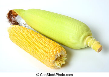 corn cobs with tag isolated