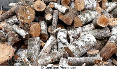 Pile of cut birch logs of different cross-sections are piled...