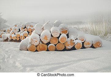 Pile of cut wood logs