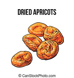 Pile of dried apricots, sketch style, hand drawn vector illustration
