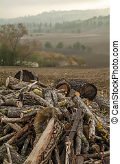 Pile of firewood among the Marche hills
