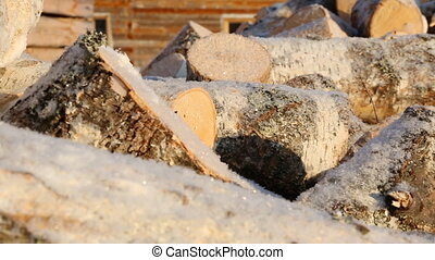 Pile of firewood in winter