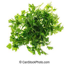 Pile of fresh parsley isolated on white background