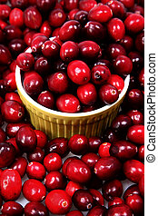 Pile of Fresh Raw Cranberries with Bowl