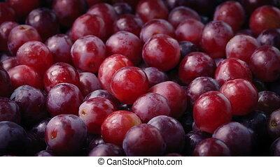 Pile Of Grapes Rotating Closeup