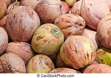 pile of green and brown coconuts