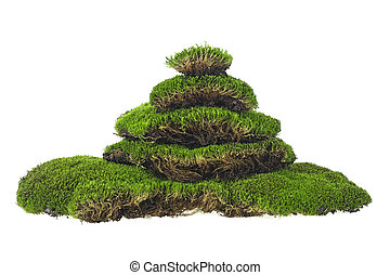 Pile of green moss on a white background. Moss pyramid.