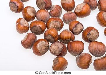 Pile of hazelnuts isolated on white background