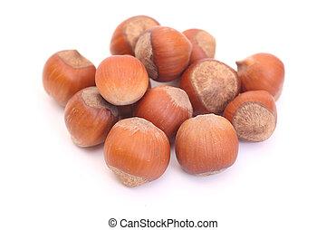 pile of hazelnuts isolated on white