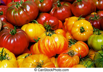 Pile of Heritage Tomatoes - Pile of red, orange, green and...