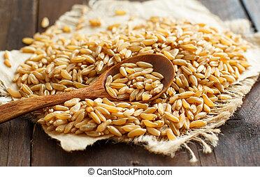Pile of Kamut grain