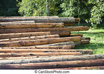 Horizontal shot of a pile of logs in a wooded area.