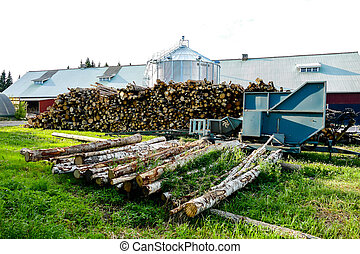 pile of logs, beautiful photo digital picture