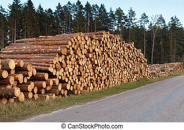 large stack with logs on the edge of the road
