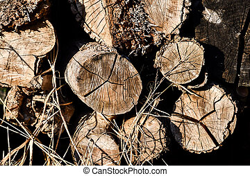 pile of logs, photo as a background, digital image