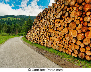 pile of logs stacked along the road.