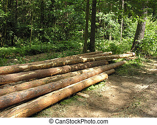 Timber stacked in pile for transportation.