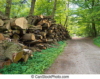 Pile of lumber - Giant pile of cut logs along a forest road...