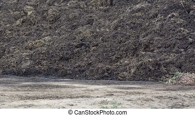 Pile of manure in the countryside. Heap of dung in field on the farm. Fertilizer from cow manure and straw.