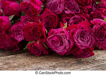 pile of mauve roses - pile of mauvesmall fresh roses on...