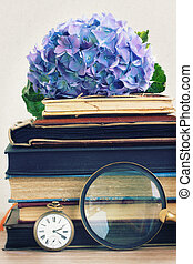 pile of old books with flowers and looking glass - pile of...