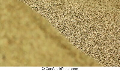 pile of paddy grains