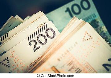 Pile of Polish Money