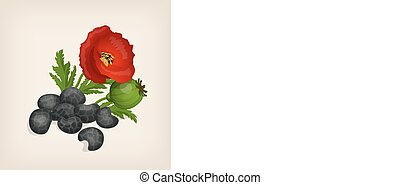 Pile of poppy seeds flowers and leaves. Vector illustration.