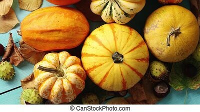Pile of pumpkins decorated with leaves and chestnuts - From...