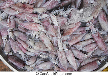 Pile of raw squid in fresh seafood market. Background and texture of fresh squid.