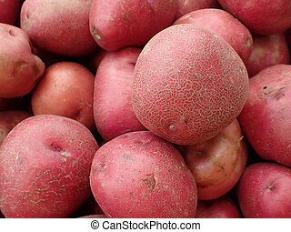 Pile of Red Potatoes for sale