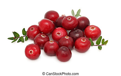 Pile of ripe cranberries (isolated)